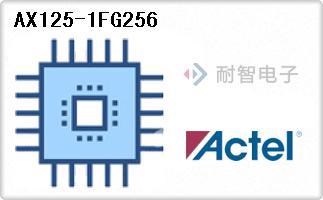 AX125-1FG256