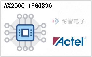AX2000-1FGG896