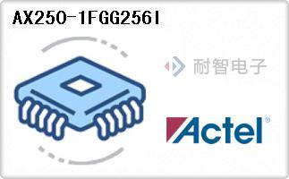 AX250-1FGG256I