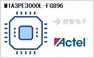 M1A3PE3000L-FG896