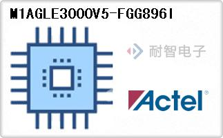 M1AGLE3000V5-FGG896I