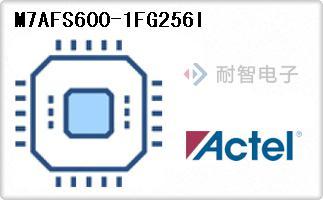 M7AFS600-1FG256I