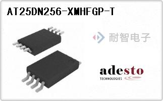 AT25DN256-XMHFGP-T