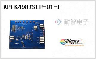 APEK4987SLP-01-T