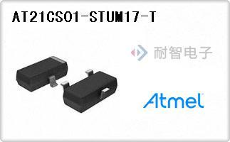 AT21CS01-STUM17-T