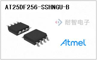 AT25DF256-SSHNGU-B