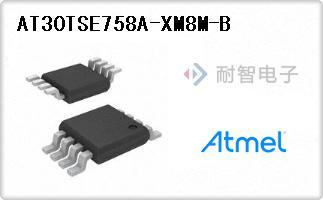 AT30TSE758A-XM8M-B