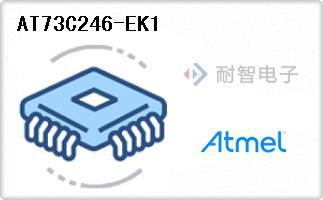 AT73C246-EK1