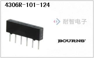 4306R-101-124