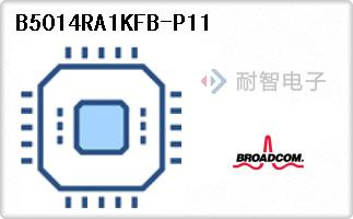 B5014RA1KFB-P11