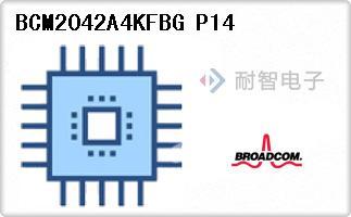 BCM2042A4KFBG P14