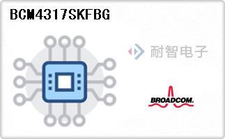 BCM4317SKFBG