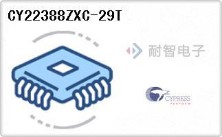 CY22388ZXC-29T