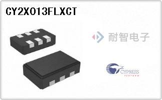 CY2X013FLXCT