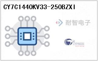 CY7C1440KV33-250BZXI