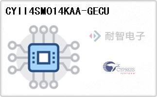 CYII4SM014KAA-GECU