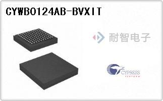 CYWB0124AB-BVXIT