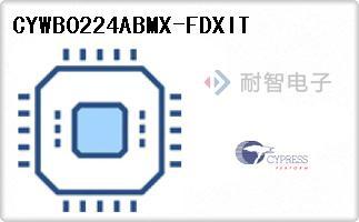 CYWB0224ABMX-FDXIT