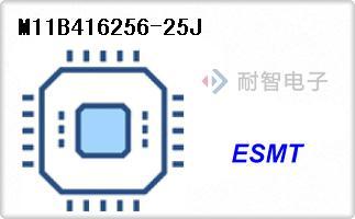 M11B416256-25J