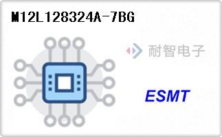 M12L128324A-7BG