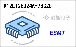 M12L128324A-7BG2E