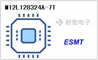 M12L128324A-7T