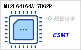M12L64164A-7BG2R