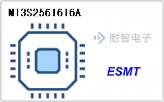 M13S2561616A