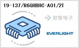 19-137/R6GHBHC-A01/2T