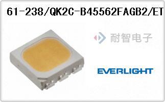 61-238/QK2C-B45562FAGB2/ET