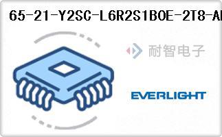 65-21-Y2SC-L6R2S1B0E-2T8-AM