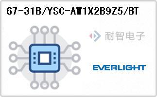 67-31B/YSC-AW1X2B9Z5/BT