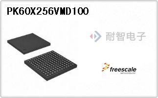 PK60X256VMD100