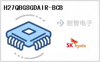 H27QBG8GDAIR-BCB
