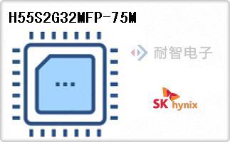 H55S2G32MFP-75M