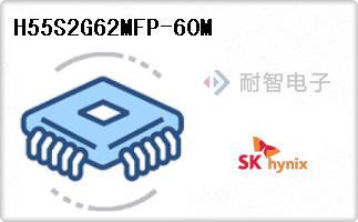 H55S2G62MFP-60M