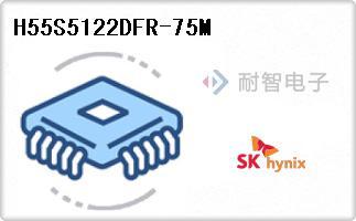 Hynix公司的LPSDR-H55S5122DFR-75M