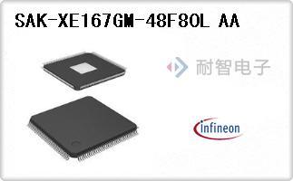 SAK-XE167GM-48F80L AA