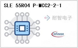 SLE 55R04 P-MCC2-2-1