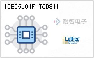 ICE65L01F-TCB81I