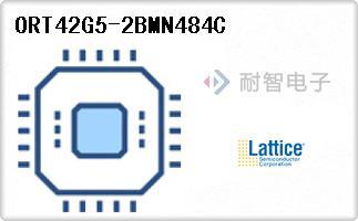 ORT42G5-2BMN484C