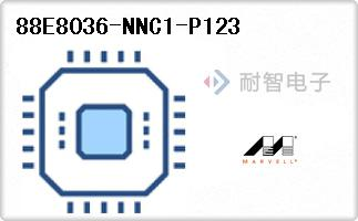 88E8036-NNC1-P123