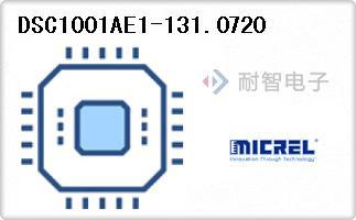 DSC1001AE1-131.0720