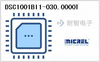 DSC1001BI1-030.0000T