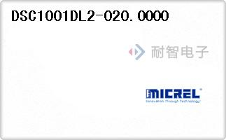 DSC1001DL2-020.0000