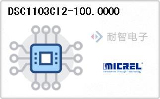 DSC1103CI2-100.0000