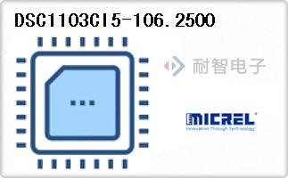 DSC1103CI5-106.2500