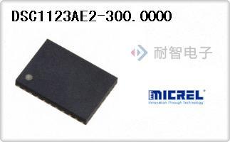 DSC1123AE2-300.0000
