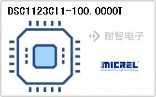 DSC1123CI1-100.0000T