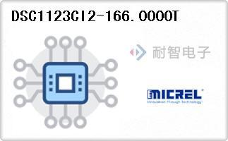 DSC1123CI2-166.0000T